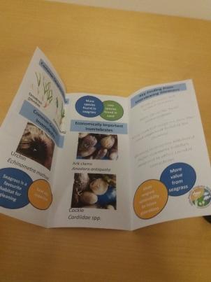 leaflet-2.jpg